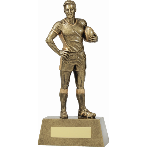 11713D Rugby Trophy 245mm