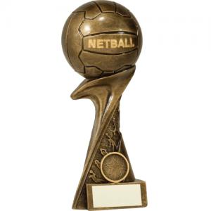 15091C Netball 200mm