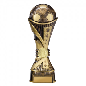 222-9BRE Soccer Trophy 250mm