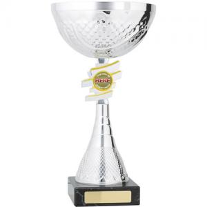 C8155 Plastic Cup 300mm