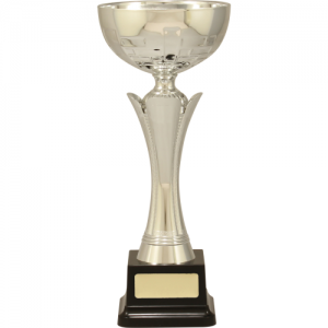 C8167 Plastic Cup 290mm
