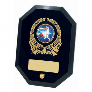 TGS951 Glass Award