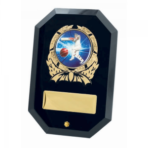 TGS953 Glass Award