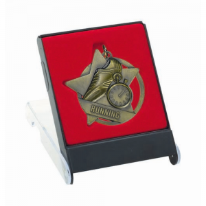 TGS960 Medal Case