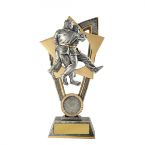 10A-FIN11J Martial Arts Trophy 175mm