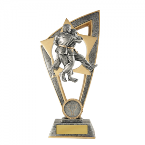 10B-FIN11J Martial Arts Trophy 200mm