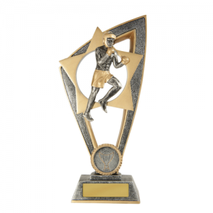 10B-FIN32B Martial Arts Trophy 200mm