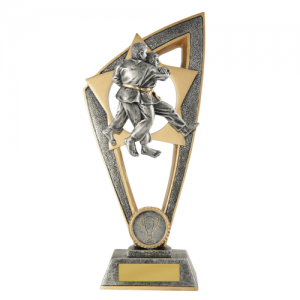 10C-FIN11J Martial Arts Trophy 230mm
