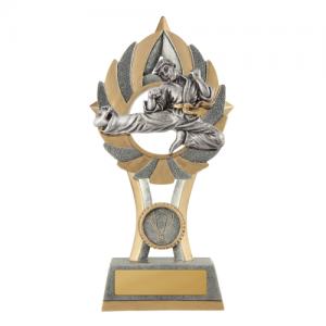 11A-FIN11MA Martial Arts Trophy 175mm