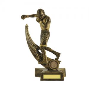 603-32C Martial Arts Trophy 210mm