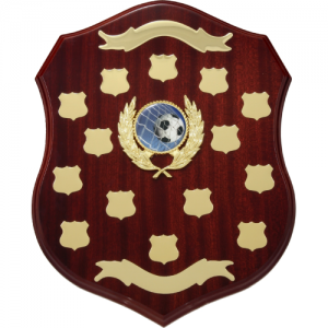LS13 Wooden Shield/Perpetual 340mm