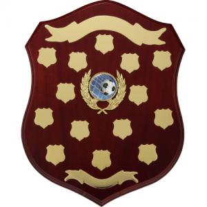 LS16 Wooden Shield/Perpetual 400mm