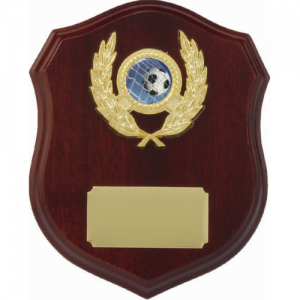 LS6 Wooden Shield 160mm