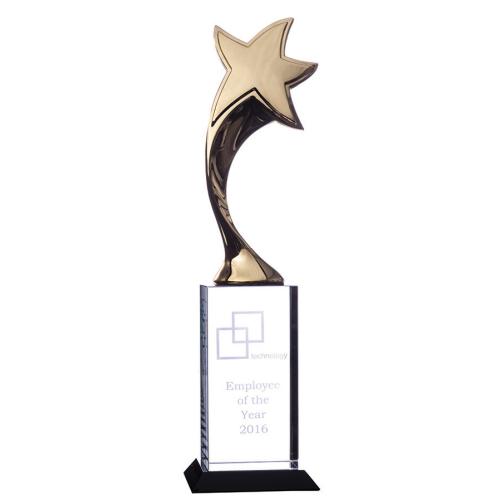 STAR1G Glass Trophy 370mm