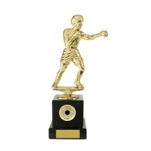 W18-3310 Martial Arts Trophy 200mm