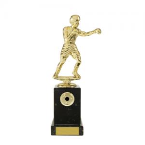 W18-3311 Martial Arts Trophy 225mm