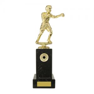 W18-3312 Martial Arts Trophy 260mm