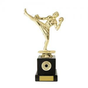 W18-3314 Martial Arts Trophy 195mm