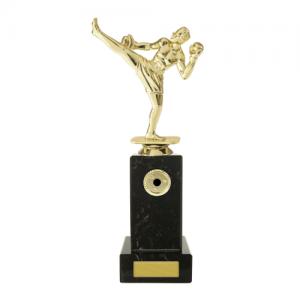 W18-3316 Martial Arts Trophy 255mm