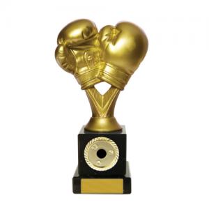 W18-3318 Martial Arts Trophy 185mm