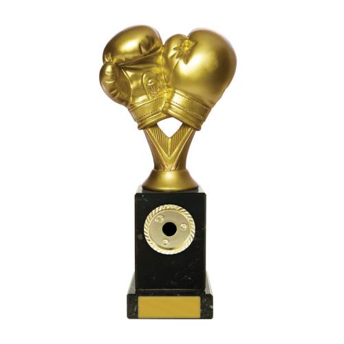 W18-3319 Martial Arts Trophy 210mm