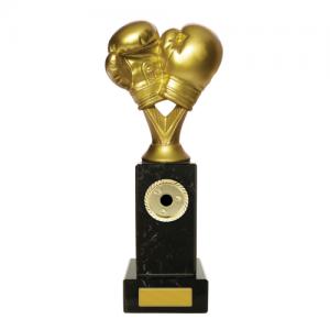 W18-3320 Martial Arts Trophy 235mm