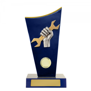 W18-6913 Novelty Trophy 230mm