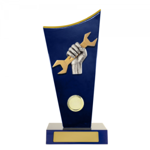 W18-6914 Novelty Trophy 260mm