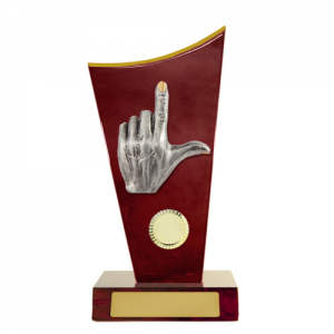 W18-6916 Novelty Trophy 230mm