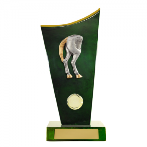 W18-6920 Novelty Trophy 260mm