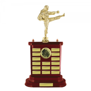 W18-7010 Perpetual Trophy 478mm