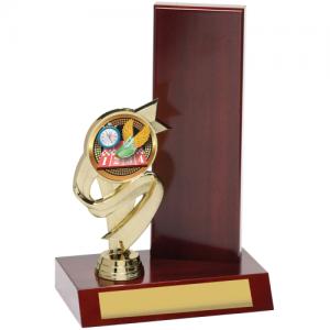 X8194 Perpetual Trophy 225mm
