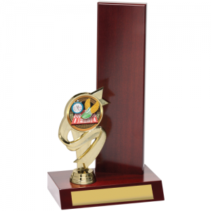 X8195 Perpetual Trophy 275mm