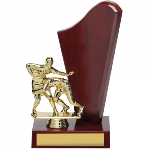 X8198 Perpetual Trophy 240mm